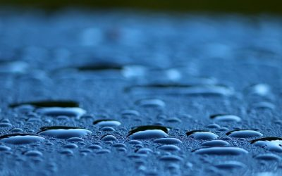 How Soft Washing Safely and Effectively Cleans Your Roof