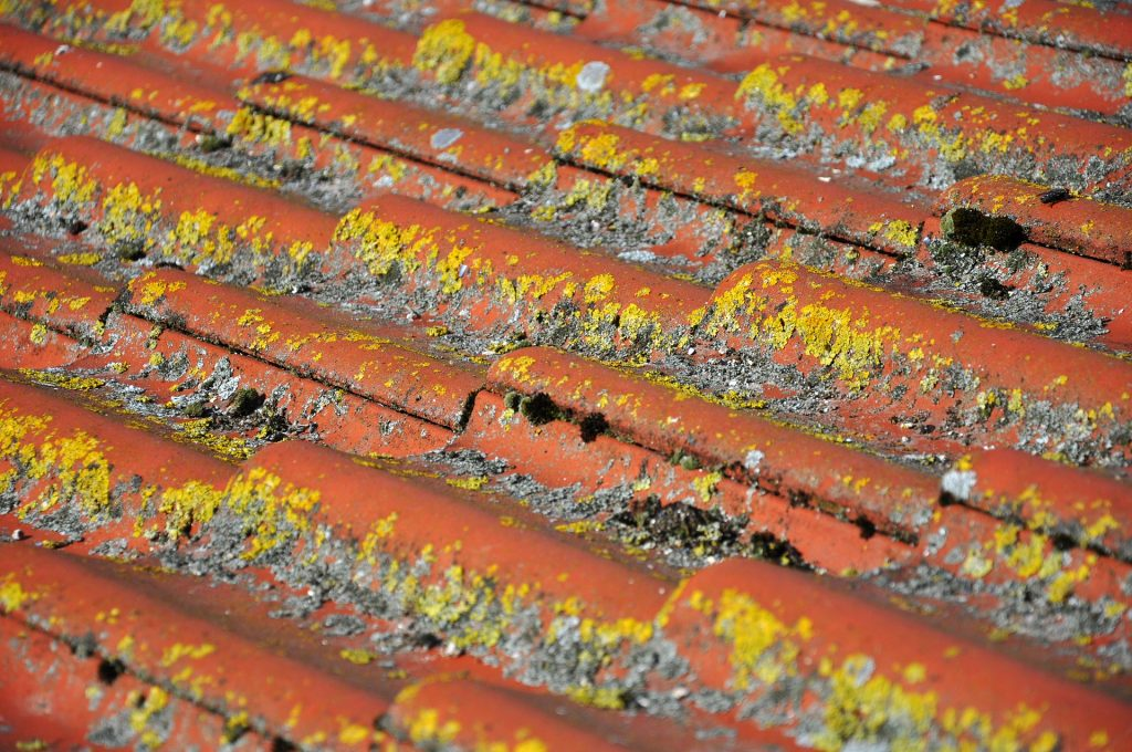 Houston Roof Cleaning